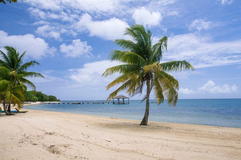 Tauchen in der Karibik