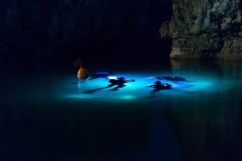 Nachttauchgang - Tauchen in der Nacht mit Licht